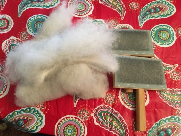 Raw fleece during carding
